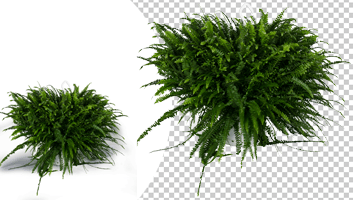 Complex Clipping Path